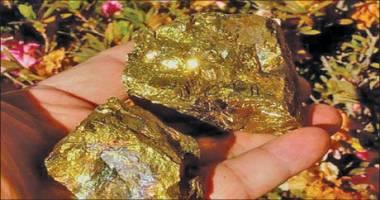 تولید سالانه بیش از ۵ تن طلا در کشور