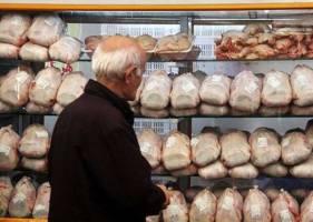 عرضه مرغ تنظیم بازاری؛ هر کیلو ۸۱۷۵تومان