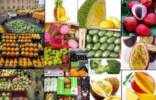 تجارت میوههای ممنوعه در فضای مجازی