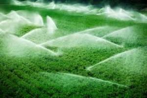 افزایش راندمان آبیاری در کشاورزی به ۴۴ درصد