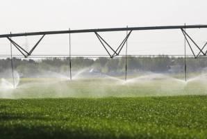 تداوم روند منفی تراز کشاورزی