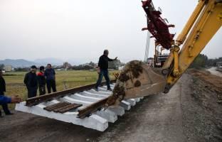 پروژههای ملی ریلی، قربانی منافع محلی