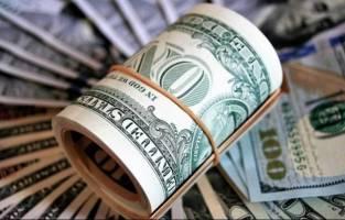 ارز دولتی منشاء توزیع ۲۰ هزارمیلیارد تومان رانت