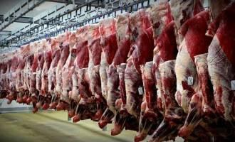 ادامه واردات تا ارزانی گوشت