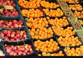 پایان ذخیره سازی ۳۰هزارتن سیب درختی برای شب عید