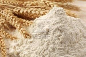 سیلوها پر از گندم و انبارها پر از آرد است