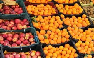 توزیع ۷۰ هزار تن سیب و پرتقال در ایام عید