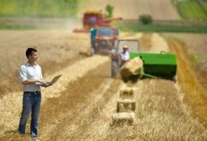 فارغالتحصیلان بیکار کشاورزی را دریابید!