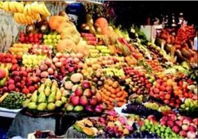 کاهش قیمت گوجه فرنگی و پیاز