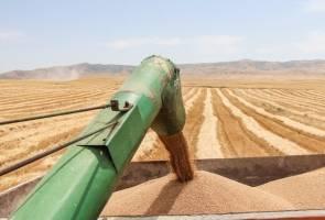 هوشمندسازی کشاورزی در دستور کار وزارت جهاد قرار دارد
