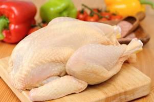 امکان تولید مرغ بومی اصلاح شده در واحدهای صنعتی فراهم شد