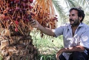 پرداخت ۲۰۰۰ میلیارد تومان تسهیلات اشتغال روستایی