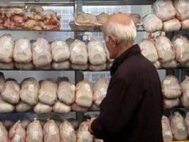 نظارت بر بازار مرغ شدت گرفت