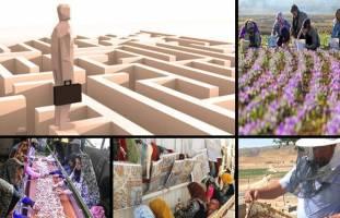 جزئیات اجرای الگوی جدید مشاغل خانگی در ۹ استان