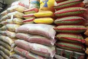 در فصل برداشت، به برنج وارداتی نیاز نداریم