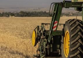 آلودگی گندم داخلی بهانهای برای واردات با ارز دولتی؟