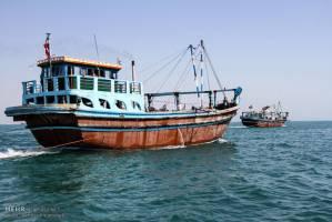 صید فانوس ماهی در خلیج فارس نداریم