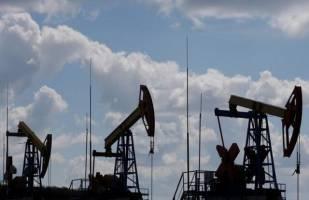 قیمت نفت کمی بالا رفت