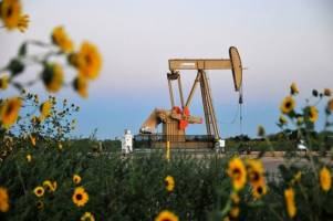خوشبینی اوپک مانع کاهش قیمت نفت شد