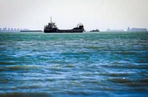 صید صنعتی در خلیج فارس ممنوع شد