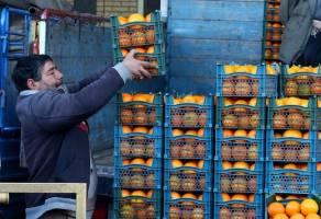 کرونا، مانع گرانی قیمت میوه شد