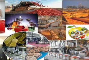 واحدهای تولیدی محصولات بهداشتی و غذایی تا پایان فروردین تعطیل نمیشوند