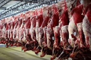 مردم برای خرید گوشت ومرغ عجله نکنند