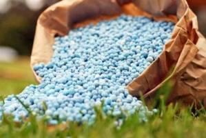 تامین نهاده های تولید اولویت مهم وزارت جهاد کشاورزی است