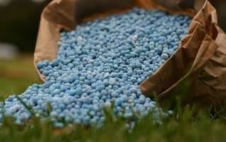 صدور مجوز صادرات کود اوره در اختیار شرکت پتروشیمی است