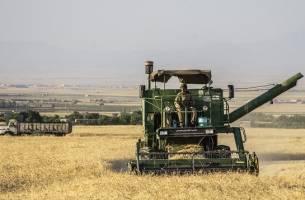 مدل کشاورزی قراردادی پیاده سازی میشود
