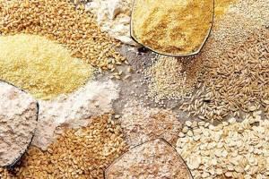 شائبه توزیع رانت در تخصیص ارز برای واردات نهاده دامی