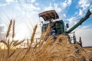 کرایه حمل گندم طی ۳ ماه ۳۰ درصد بالا رفت
