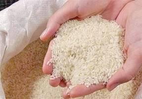 لزوم پرداخت ارز دولتی برنجهایی که با مصوبه شورای امنیت ملی وارد شد
