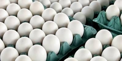 قیمت هر شانه تخم مرغ به 38 هزار تومان رسید