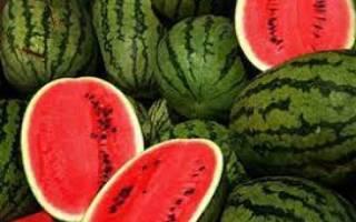 اختلاف قیمت بیش از ۵۰ هزار تومانی میوههای نوبرانه از میادین تا بازار! / جدول قیمت