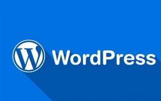 توصیه پلیس به سایتهای ایرانی برای استفاده از افزونه «وردپرس»
