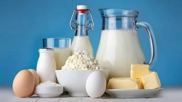 قیمت لبنیات ثابت میماند اگر خوراک دام با نرخ مناسب تامین شود
