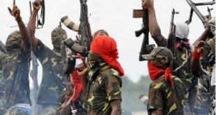 دو حمله انتحاری در کامرون ۲۴ کشته و مجروح بر جای گذاشت